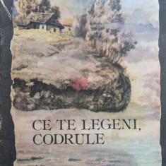 CE TE LEGENI, CODRULE - Mihai Eminescu (ilustratii Nicolae Alexi) - Carte educativa