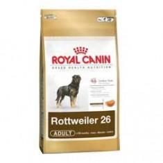 Royal Canin Rottweiler Adult 12 kg - Mancare caini