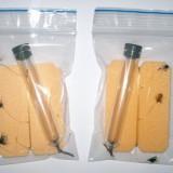 Taparina pentru oblete cu muste ude si buldo ( linie cu doua muste ) - Momeala artificiala Pescuit