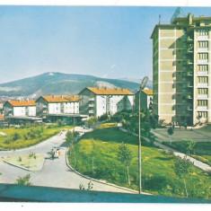 7424 - Romania ( 37 ) - Caras-Severin, RESITA - postcard - unused - Carte Postala Banat dupa 1918, Necirculata, Printata