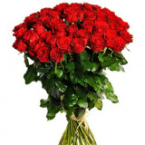Oferta verii - Trandafir