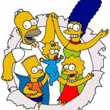 The Simpsons - 27 sezoane - Film serial, Comedie, DVD, Altele