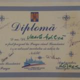 DIPLOMA OFICIALA ROMANIA NATO 2002 - Diploma/Certificat