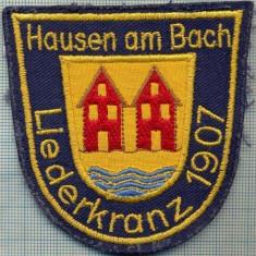 218 -EMBLEMA BLAZON OFICIAL -HAUSEN AM BACH - GERMANIA -starea care se vede