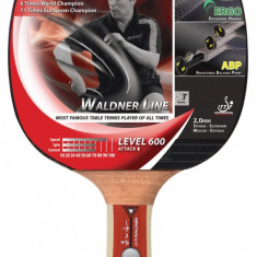 Paleta ping pong - Paleta tenis de masa Attack Waldner 600 include DVD