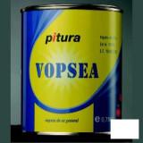 Vopsea lucioasa negru Pitura - 0.75 L