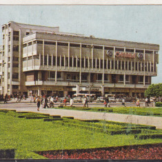 Bnk cld Calendar de buzunar - 1983 - Magazinul Omnia Ploiesti - Calendar colectie