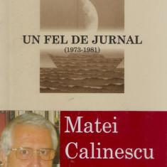 Matei Calinescu - Un fel de jurnal - 510680 - Biografie