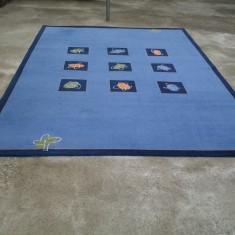 Covor Albastru 240 X 340 cm