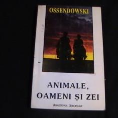 Carte religioasa - ANIMALE OAMENI SI ZEI-COL MIT SI RELIGIE-FERDINAND OSENDOWSKI-241 PG-