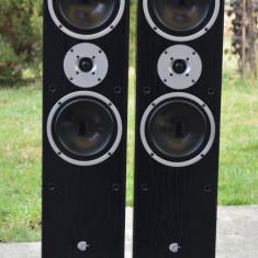 Boxe Technics, Boxe podea, 81-120W - Boxe CAT MBC 313 S