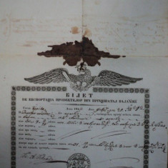 Braila, bilet de export cereale pentru negustorul Dumitru Teodor, 1847 - Pasaport/Document