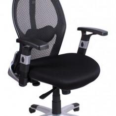 Scaun ergonomic, de birou, directorial ErgoFuture - Scaun birou, Negru