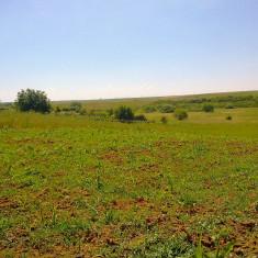Teren de vanzare - Vând teren intravilan