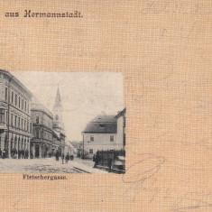 SIBIU, SALUTARI DIN SIBIU, CIRCULATA OKT.*902 - Carte Postala Transilvania pana la 1904, Printata