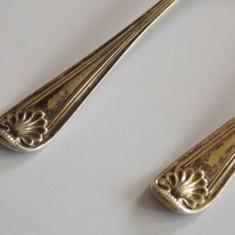 Lingurite de argint, Tacamuri