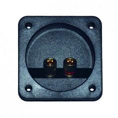 Generic CONECTOR BOXA 2 TERMINALE GOLD