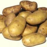 Cartofi rosii si cartofi alb en-gros - Legume