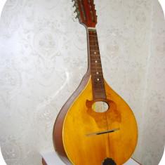 Mandolina Reghin