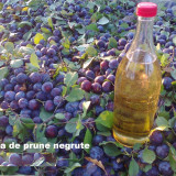 Palinca de: Prune, Pere, Cirese, Caise, - 53 grade