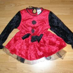 Costum carnaval serbare buburuza pentru copii de 3-4 ani - Costum Halloween, Marime: Masura unica, Culoare: Din imagine